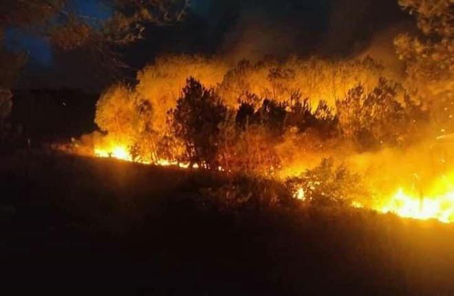 Cả nghìn người dập lửa đám cháy rừng lan qua nhiều xã ở Nghệ An - Ảnh 6.
