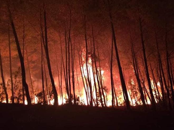 Cả nghìn người dập lửa đám cháy rừng lan qua nhiều xã ở Nghệ An - Ảnh 5.