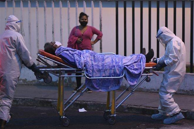 Dịch COVID-19 tới 6h sáng 27/6: Nhiều bang Mỹ ngừng mở cửa, Ấn Độ vượt nửa triệu ca bệnh - Ảnh 4.