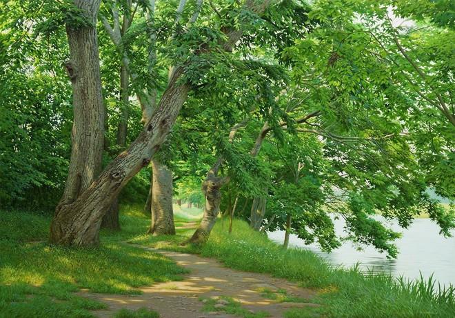 Hình ảnh cánh rừng xanh ngát xanh đem lại cảm giác yên bình khó tả nhưng ẩn chứa đằng sau đó là sự thật khó tin - Ảnh 4.
