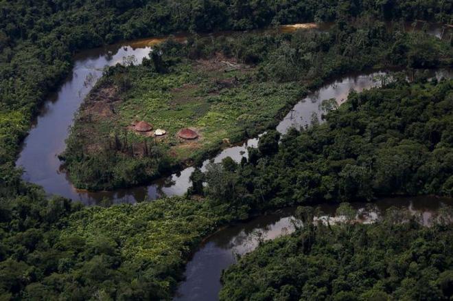 'Cơn sốt vàng Amazon đe dọa sự sinh tồn của bộ lạc lớn nhất Brazil - Ảnh 2.