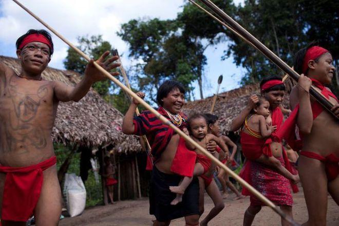 'Cơn sốt vàng Amazon đe dọa sự sinh tồn của bộ lạc lớn nhất Brazil - Ảnh 3.