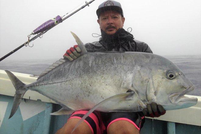 Sự thật bất ngờ về con cá màu sắc gây sốt ở Nhật Bản - Ảnh 6.