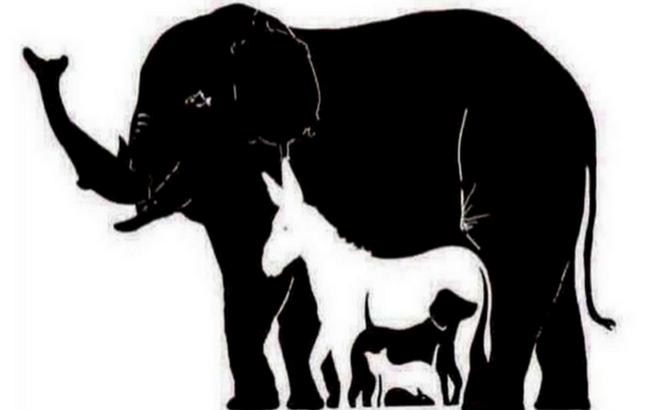 Phải rất tinh mắt bạn mới đếm được tới 16 con vật trong hình này!