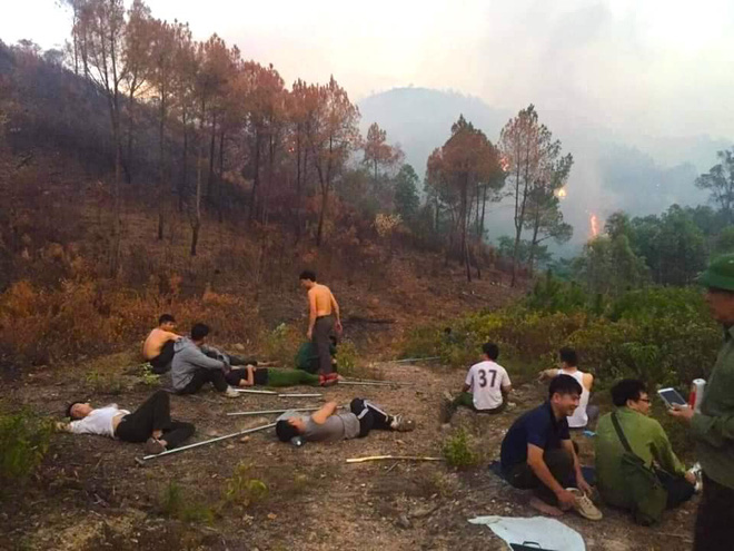 Cảnh hoang tàn ở cánh rừng thông già sau nhiều đợt cháy hoành hành những ngày qua - Ảnh 2.