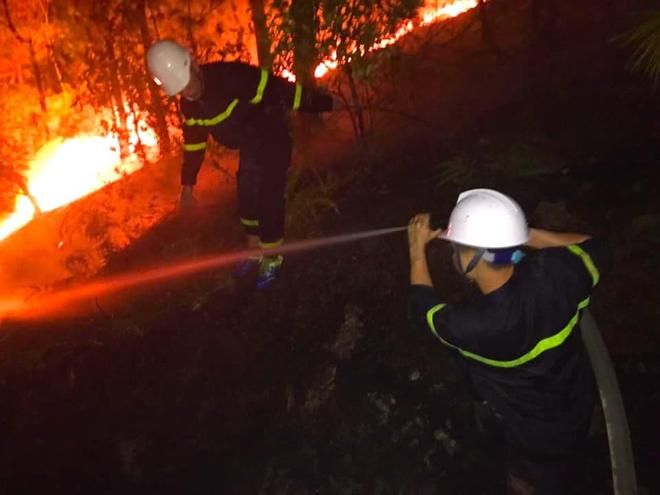 Cảnh hoang tàn ở cánh rừng thông già sau nhiều đợt cháy hoành hành những ngày qua - Ảnh 7.