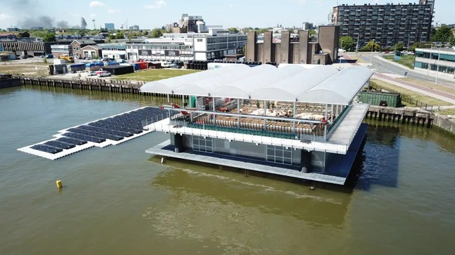 Ngỡ ngàng trước trang trại gà nổi trên mặt nước ở Hà Lan - Ảnh 1.
