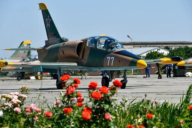 Ngắm những 'bông hồng' Nga lái máy bay chiến đấu - Ảnh 2.