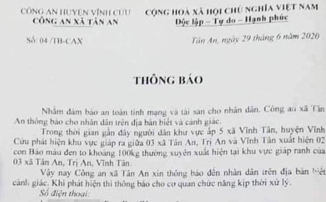 Xôn xao thông tin 2 con báo đen xuất hiện ở giáp ranh 3 xã tại tỉnh Đồng Nai