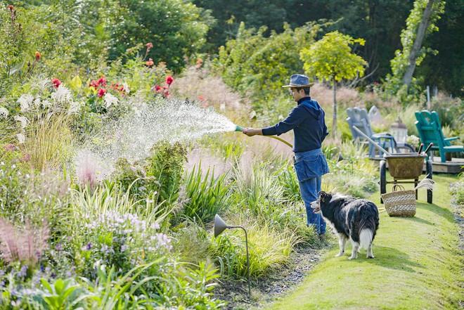 Từ bỏ cuộc sống thành đạt, cặp vợ chồng 40 tuổi về quê sống yên bình bên khu vườn rộng 3000m² - Ảnh 1.