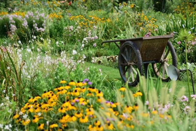 Từ bỏ cuộc sống thành đạt, cặp vợ chồng 40 tuổi về quê sống yên bình bên khu vườn rộng 3000m² - Ảnh 16.