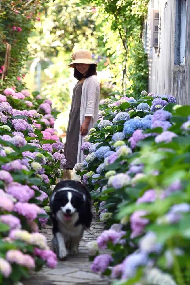 Từ bỏ cuộc sống thành đạt, cặp vợ chồng 40 tuổi về quê sống yên bình bên khu vườn rộng 3000m² - Ảnh 18.