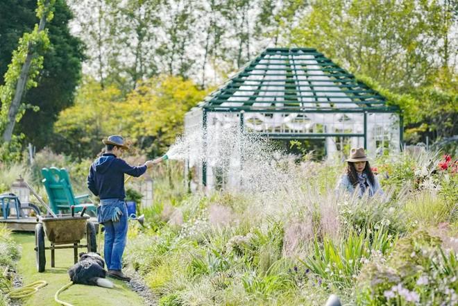 Từ bỏ cuộc sống thành đạt, cặp vợ chồng 40 tuổi về quê sống yên bình bên khu vườn rộng 3000m² - Ảnh 19.