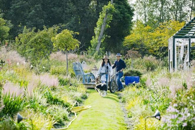 Từ bỏ cuộc sống thành đạt, cặp vợ chồng 40 tuổi về quê sống yên bình bên khu vườn rộng 3000m² - Ảnh 4.