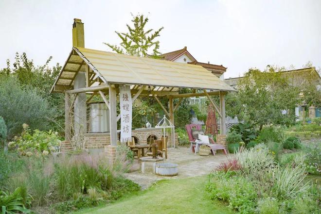 Từ bỏ cuộc sống thành đạt, cặp vợ chồng 40 tuổi về quê sống yên bình bên khu vườn rộng 3000m² - Ảnh 12.