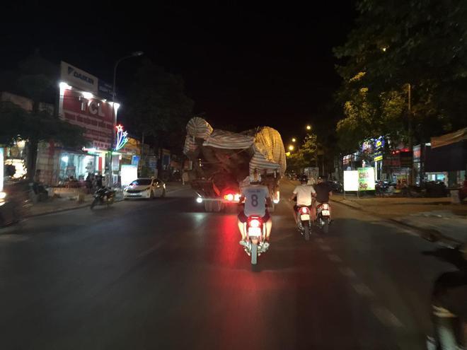 Xôn xao hình ảnh xe chở cây quái thú băng băng chạy trên đường ở Nghệ An - Ảnh 7.