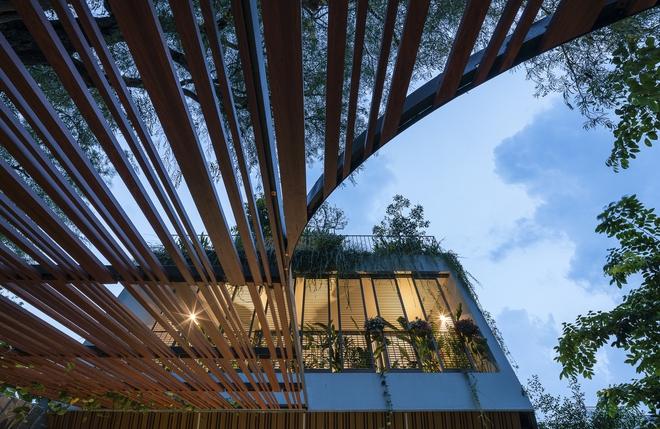 Công viên trên mái nhà tại Tp Hồ Chí Minh trên báo ngoại - Ảnh 6.