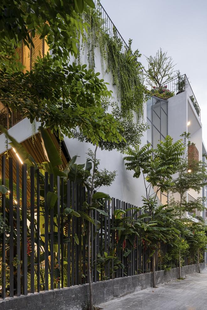 Công viên trên mái nhà tại Tp Hồ Chí Minh trên báo ngoại - Ảnh 1.