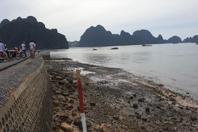 Xe ô tô lao xuống biển ở Hạ Long: Nạn nhân thứ 4 tử vong, lái xe có nồng độ cồn ở mức cao - Ảnh 2.