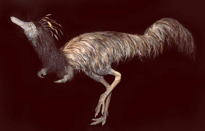 Sinh vật lạ từ Suối Địa Ngục: Đầu khủng long, mình đà điểu... - Ảnh 1.