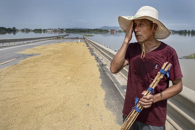 COVID-19 vừa ngớt, lũ lụt lại tấn công; người sống gần hồ Bà Dương (TQ) bức xúc vì con đê đậu phụ - Ảnh 7.
