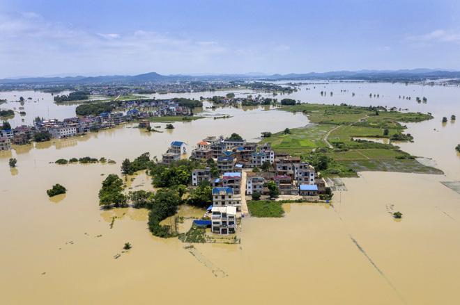 COVID-19 vừa ngớt, lũ lụt lại tấn công; người sống gần hồ Bà Dương (TQ) bức xúc vì con đê đậu phụ - Ảnh 8.
