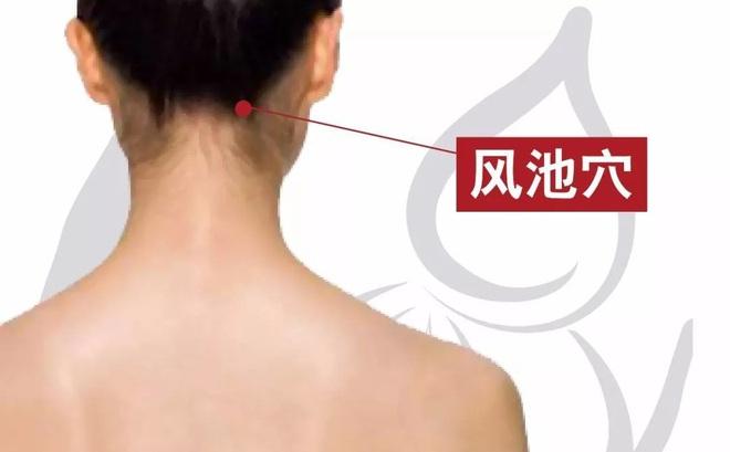 [Bấm huyệt mỗi ngày] Huyệt phong trì – cải thiện ngay những căn bệnh ở vùng đầu cổ