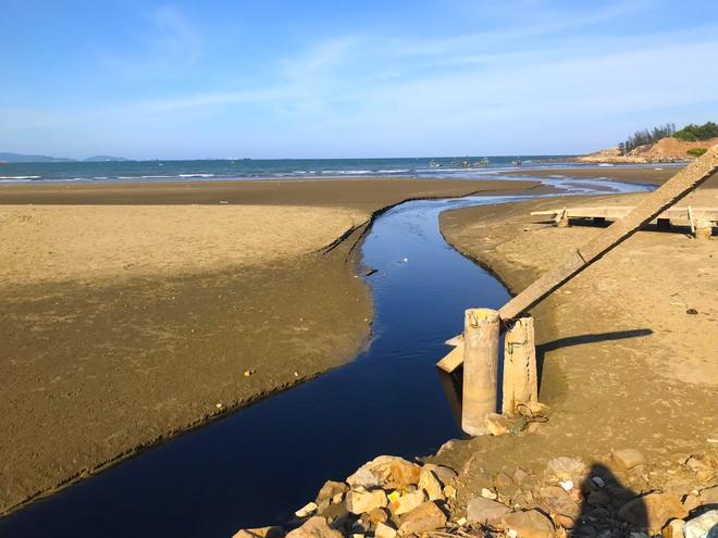 Kinh hãi với kênh nước thải đen ngòm hôi thối, xả thẳng ra biển của trại nuôi tôm ở Nghệ An - Ảnh 6.