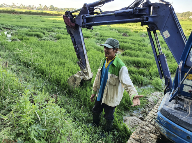 Đất Xanh Quảng Ngãi ngang nhiên dùng máy xúc lấp đất ruộng khi chưa được giao đất - Ảnh 3.