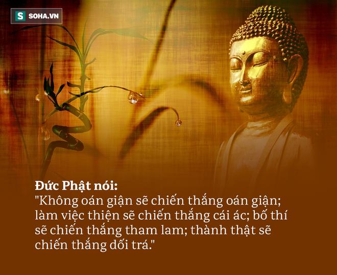 Bị chửi rủa thẳng mặt, phản ứng của Đức Phật khiến đối phương đuối lý, nhận được bài học đáng nhớ - Ảnh 3.