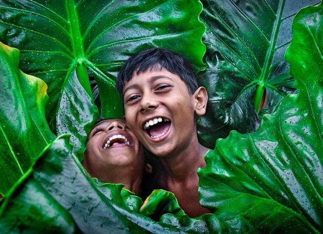 20 bức ảnh tuyệt đẹp về màu xanh lá cây giúp bạn thư giãn ngay lập tức - Ảnh 12.