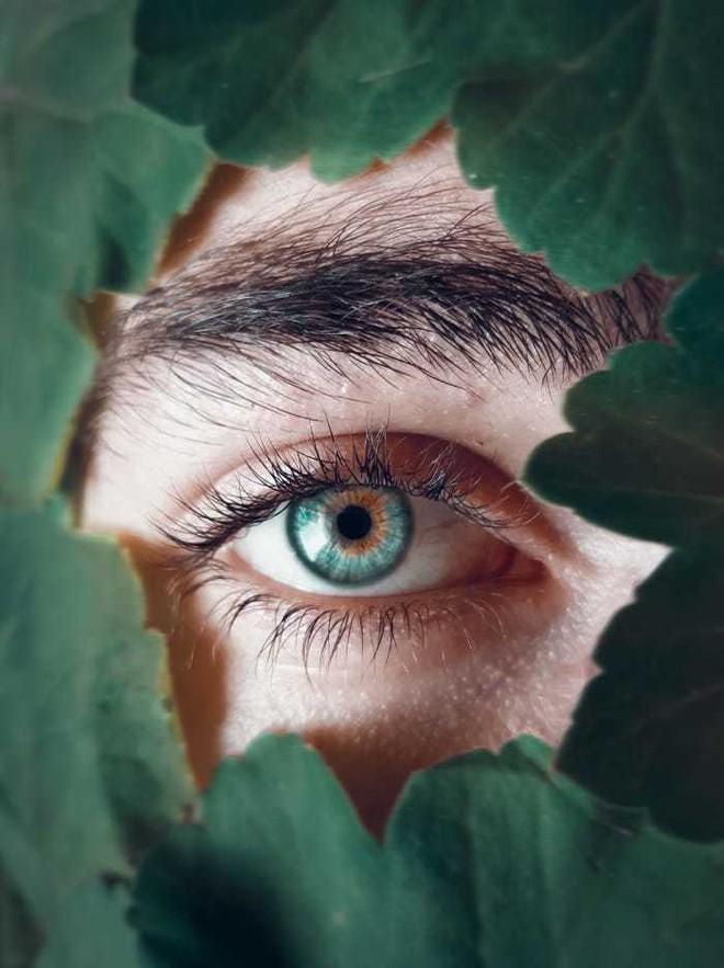 20 bức ảnh tuyệt đẹp về màu xanh lá cây giúp bạn thư giãn ngay lập tức - Ảnh 13.