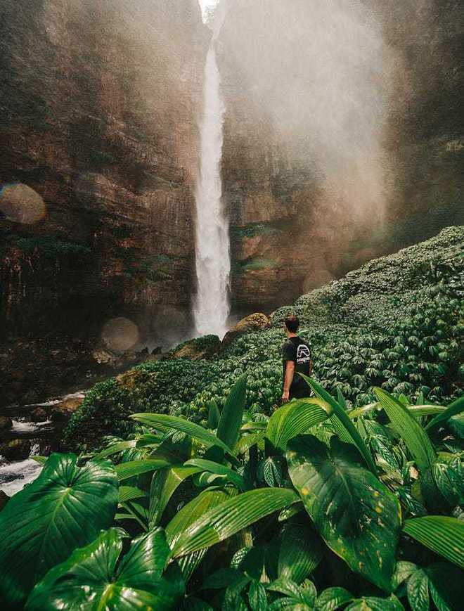 20 bức ảnh tuyệt đẹp về màu xanh lá cây giúp bạn thư giãn ngay lập tức - Ảnh 18.