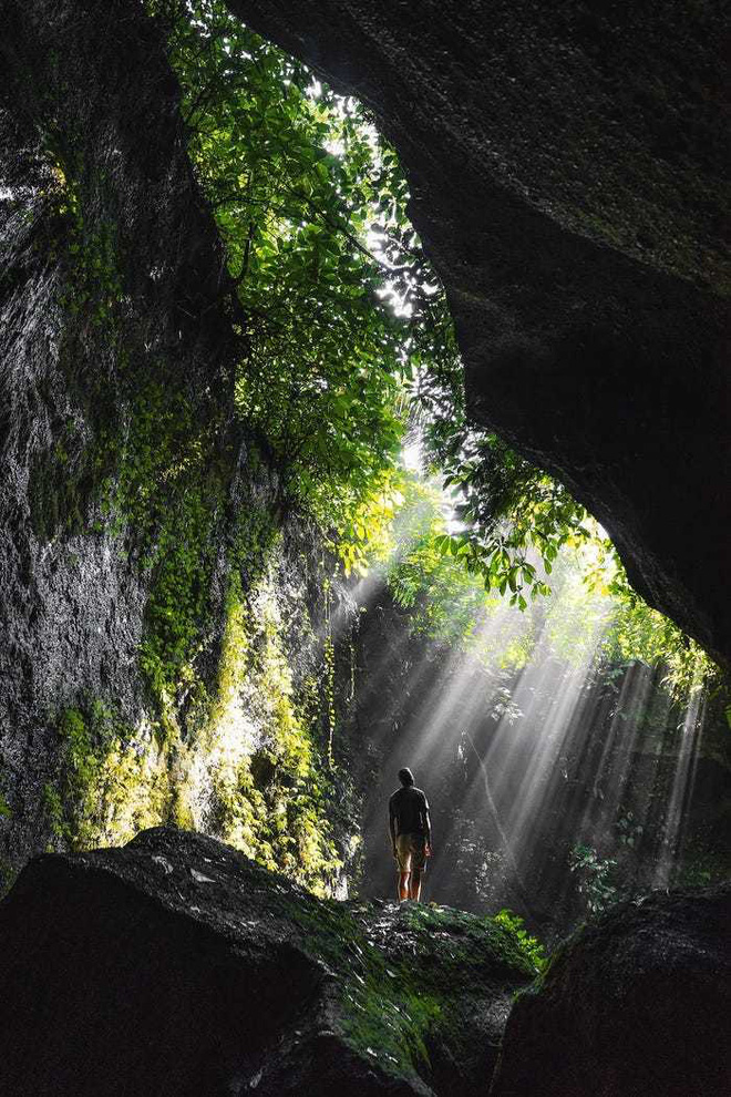 20 bức ảnh tuyệt đẹp về màu xanh lá cây giúp bạn thư giãn ngay lập tức - Ảnh 3.