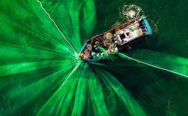 20 bức ảnh tuyệt đẹp về màu xanh lá cây giúp bạn thư giãn ngay lập tức - Ảnh 7.