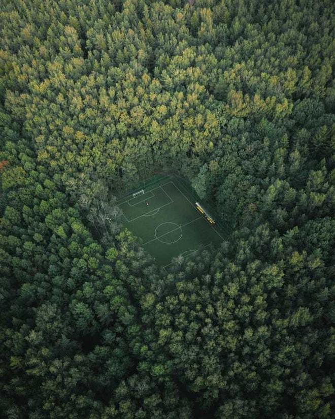 20 bức ảnh tuyệt đẹp về màu xanh lá cây giúp bạn thư giãn ngay lập tức - Ảnh 8.