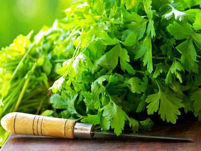 Hướng dẫn chữa viêm dạ dày bằng rau mùi tây - Ảnh 1.