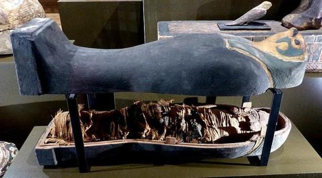 Quét CT xác ướp hoàng tử, sốc với hài cốt không phải con người - Ảnh 1.