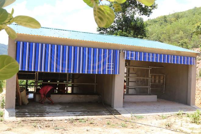 Cận cảnh chuồng bò hạng sang, có loại giá hơn 230 triệu đồng ở Nghệ An - Ảnh 4.