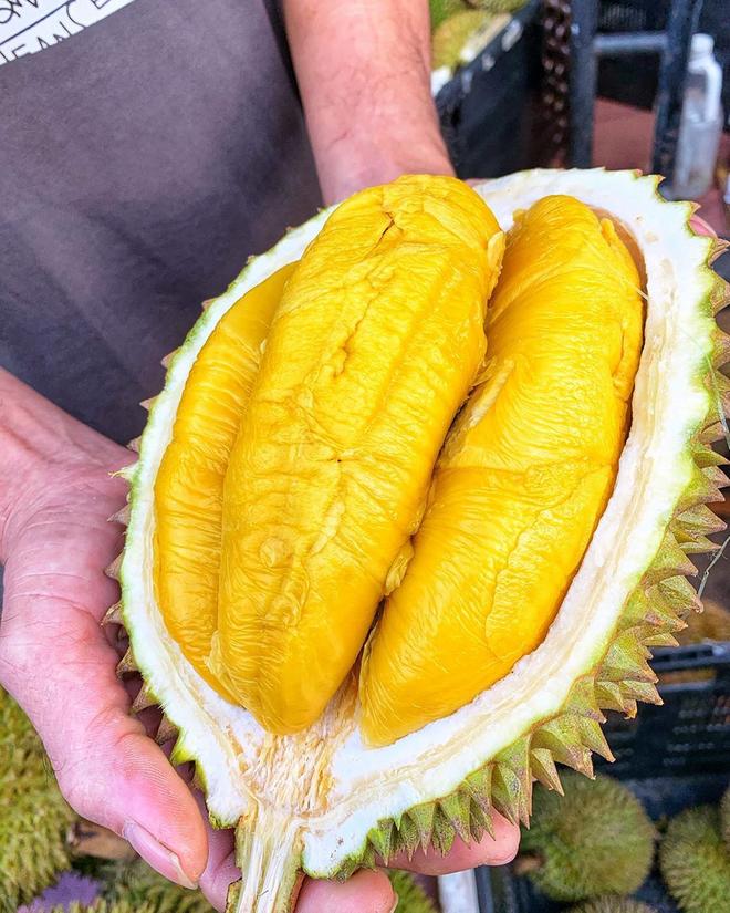 Tất tần tật thông tin về loại sầu riêng ngon nhất thế giới bán tại Việt Nam với giá 1,6 triệu/kg, dù đắt vẫn được giới sành ăn đổ mua - Ảnh 9.