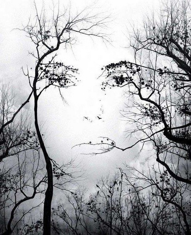 Bạn nhìn thấy mặt cô gái, cành cây hay con chim trước tiên? Nó tiết lộ may mắn trong đời bạn  - Ảnh 1.