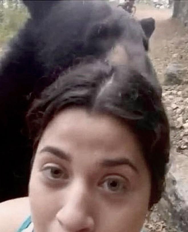 Hy hữu: Gặp nhóm nữ du khách đi bộ trong rừng, gấu đen tiến đến sàm sỡ - Ảnh 3.