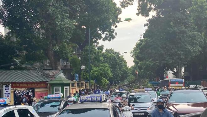 Cây xà cừ đổ gãy đè bẹp 3 ô tô trên phố Hà Nội - Ảnh 3.