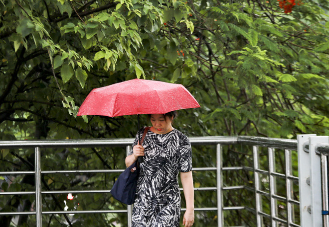 Video: Hà Nội đón cơn mưa vàng ngắn ngủi giải nhiệt sau nhiều ngày nắng nóng - Ảnh 7.