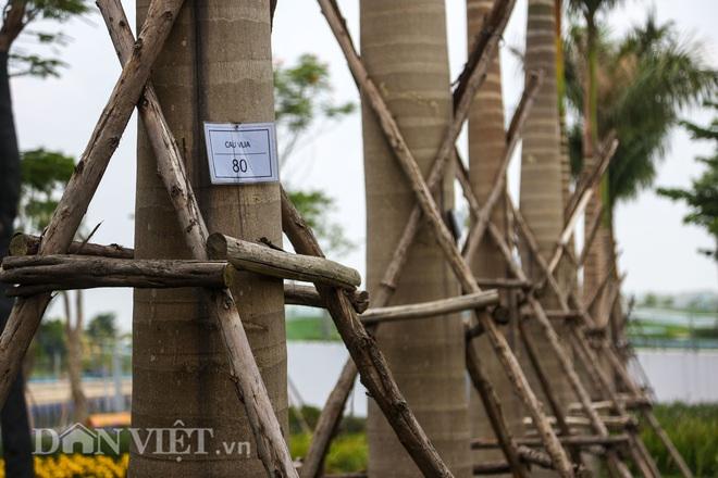 Toàn cảnh công viên Thiên văn học đầu tiên của Đông Nam Á ở Hà Nội - Ảnh 13.