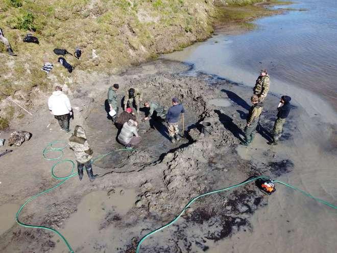 Băng tan tại Bắc Cực để lộ hài cốt voi ma mút niên đại 10.000 năm tuổi - Ảnh 1.