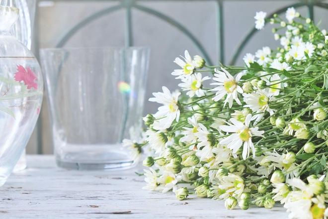 Làm thế nào để hoa trong bình tươi lâu hơn? - thiền sư giải thích đáp án, mang đến lợi ích trọn đời cho tất cả mọi người - Ảnh 2.
