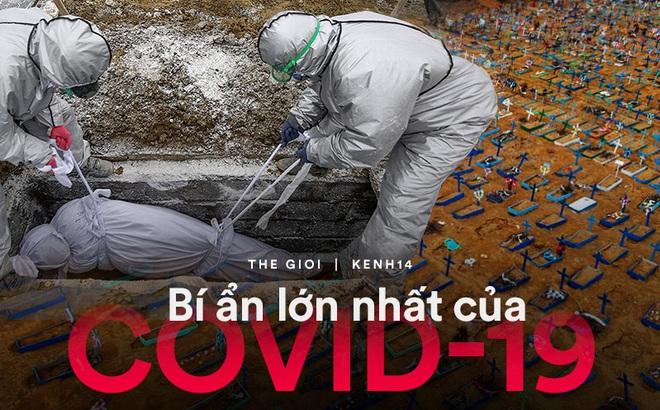 6 tháng hơn nửa triệu người chết, Covid-19 vẫn để lại một bí ẩn cực lớn: Nó thực sự chết chóc đến mức nào?