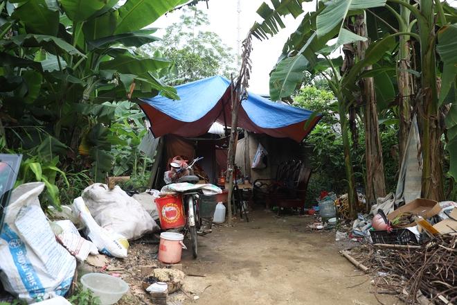 Người phụ nữ nhiều năm sống trong vườn chuối, ăn cây chuối, rau sắn qua ngày - Ảnh 3.