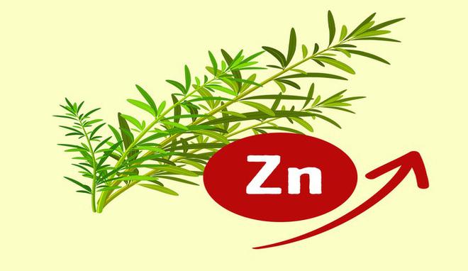 11 nguyên liệu tự nhiên giúp loại bỏ mùi hôi cơ thể - Ảnh 11.